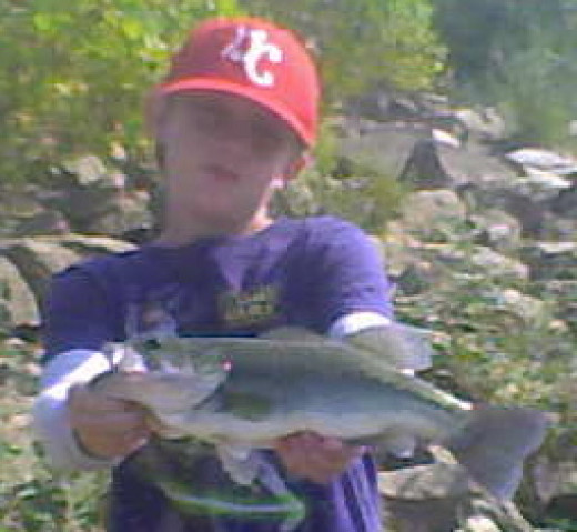 Nothing quite like the fight of a nice-size largemouth bass to let you know just how alive the Ohio River waterway is