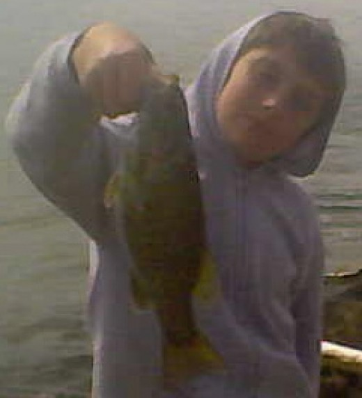 This 12-inch smallmouth bass was caught in faster current in rip-rap on the SR7.