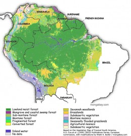 This map shows the indigenous forest types of Brazil. A lot of it has been lost to slash and burn agriculture and development.