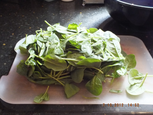 Wow, that's a lot of spinach!