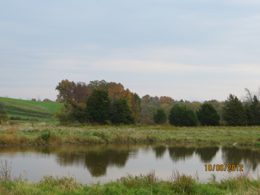 An irrigation pond on the farm