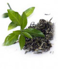 Can Green Tea really Grow Your Hair Back
