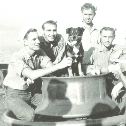 "Seaworthy friend and companion, Sinbad the dog was a pal to the crew of U.S. Coast Guard ""Campbell"" and the most famous water mascot ever recorded."