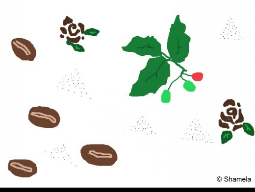 My drawing of coffee beans, brown colored roses and a small branch of a coffee plant.Can you count the beans?