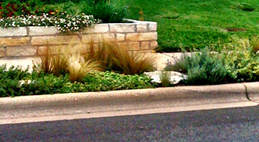 Greenery mixed with stone