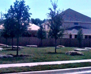 Another view of the neighborhood green space with rocks placed in intervals across the green area.