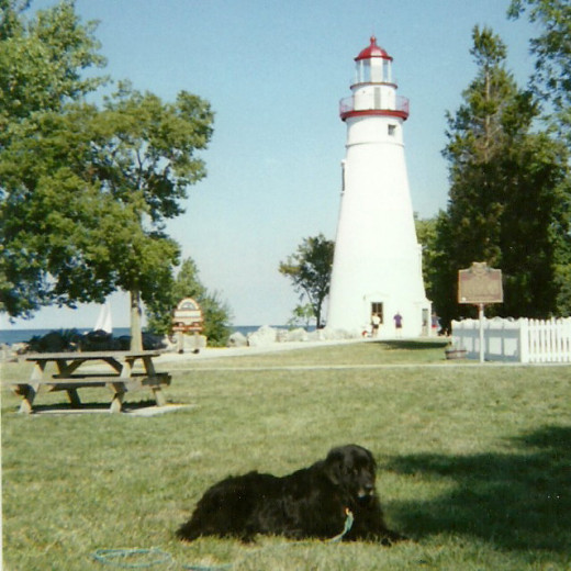Ebony in front of Marblehead Lighthouse at Marblehead Lighthouse State Park, Lake Erie, one of our favorite hangouts. (Photo by Barbara Anne Helberg, 2005)