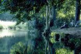 The quiet of a River Derwent bankside