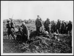 WWI: German prisoners being led away.