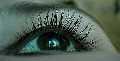 This is definitely not my eye or my eyelashes; this is more like the eyelashes that I want!