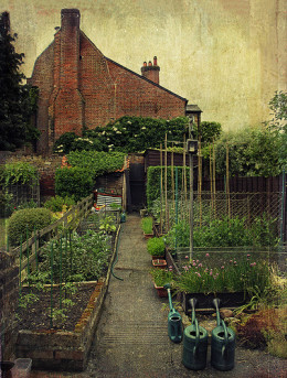 Having a kitchen garden means that you have fresh fruit and vegetables to eat and for cooking