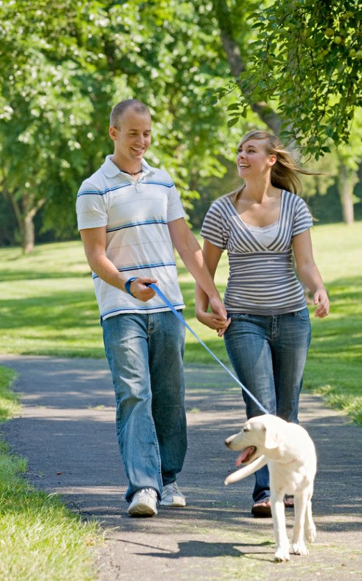 Walking your dog is a great way to relieve stress, get exercise and socialize.