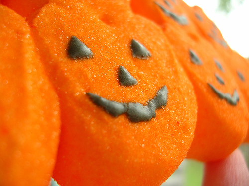 Little pumpkin shaped marshmallow peeps