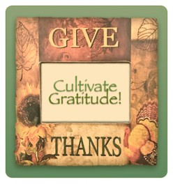 Cultivating Gratitude in a Materialistic Society
