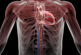 Pleurisy and increased risk of heart disease
