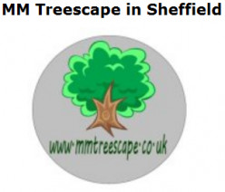 In need of a tree surgeon?