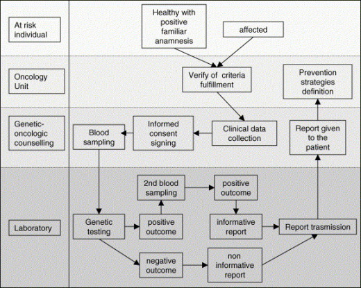 Model of clinical management of an at-risk individual, their identification, the genetic-oncologic counselling and the genetic testing execution