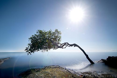 Enlightenment from Davidanoar / DavidArt.com Source: flickr.com