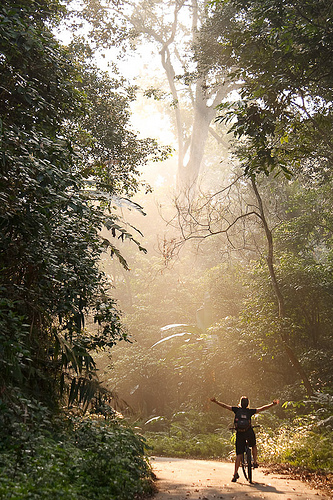 Enlightenment on a Bicycle from Maaaaaaaax! Source: flickr.com