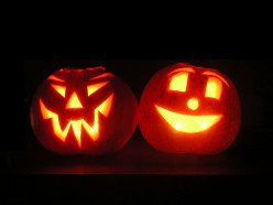 If you get pumpkins for Halloween, do you buy them at a store or go to a pumpkin patch?