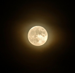 Lunar Cycles and Women's Menstruation