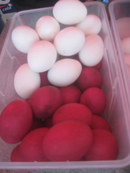 Salted and fresh eggs