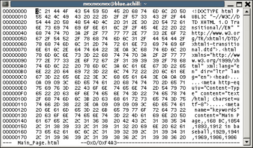 An example of code in a hex editor.