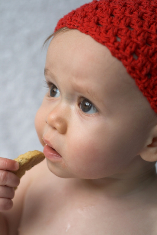 Baby Cookie by Beatricekillam Image of baby eating a cookie © Beatricekillam | Stock Free Images & Dreamstime Stock Photos