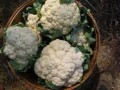 Fight Cancer with Cauliflower Soup