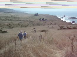 Hiking along the coast