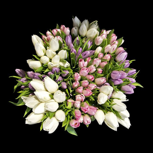 This bouquet of tulips, photographed by Jebulon on February 13, 2011, would be an excellent gift when invited to dinner for a special occasion.
