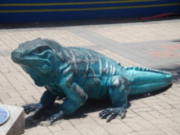 A scupture of Iguana Lizard in the middle of Cayman Island Shopping District.  Image Is Peoperty of ComfortB. Use image by permission only.