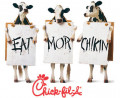 "Chick-Fil-a has been lambasted by the media for supporting traditional marriage. ""Anyone who eats S%#@ Fil-A deserves to get the cancer..."" -Rosanne Bar."