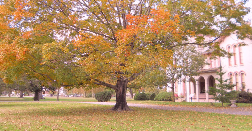 Photo of the Governor Ross Mansion & Plantation in fall.