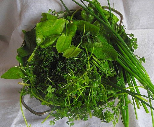 Fresh herbs add delightful flavors and aromas to a wide variety of dishes and salads.