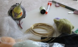 My cockatiel playing with wool roving. Not exactly sprouts...He should really get sprouts!