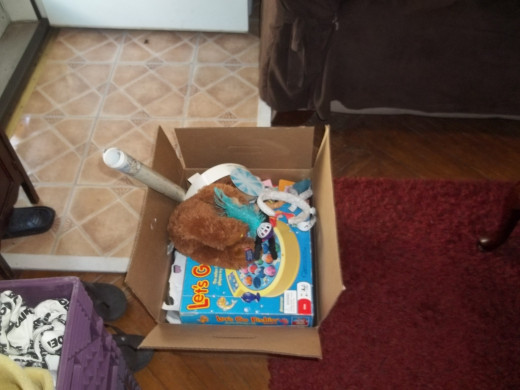 Place all items that do not belong in the living room into a box to be put away later.