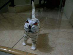 Some Easy Steps How to Make a Cat Figurine From Used Plastic Bottles.