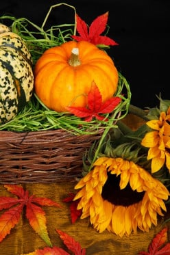 6 Best Thanksgiving Gift Ideas - Where to Find Hostess Gifts