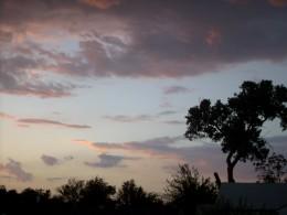 morning dawns