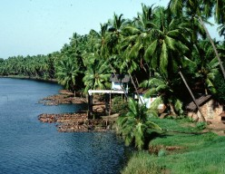 Kerala, The land of Coconuts-A Study