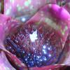 misty103 profile image