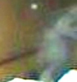 Are the apparitions caught on camera and video the same ones who attach to human beings?