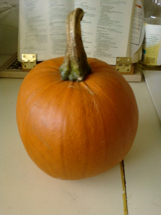 A Sugar Pumpkin.