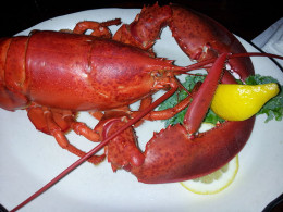 All lobsters, except white lobsters, turn red when they are cooked.
