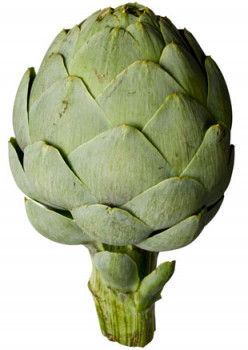 What is the best way to cook an Artichoke?