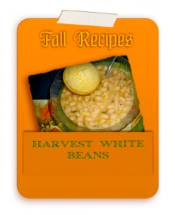 Harvest White Beans Recipe