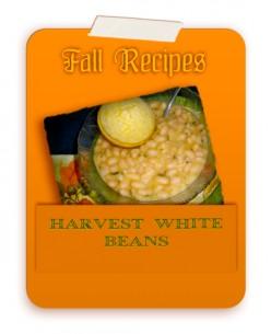 Harvest White Beans Recipe