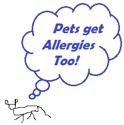 Air Pollution concentrates about 4 feet off the floor where many Dogs breathe the air.