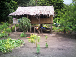 Living in Rural Papua New Guinea-Why it is Less Stressful.